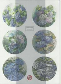 BOWOC 150-2237-UV Bloemen uitdrukvel