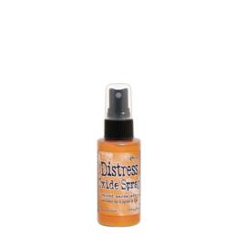 TSO64800-Ranger • Tim Holtz distress oxide spray spiced marmalade