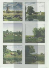 BOBO 100-3303-KN Landschap knipvel