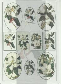 BOBO 100-3308-KN Bloemen knipvel