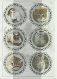 BOBO 100-3312-KN Katten