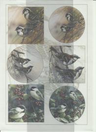 BOBO 100-3302-KN Vogels knipvel