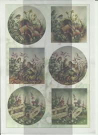 BOBO 100-3322-KN Vogels