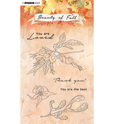 SL-BF-STAMP64 - Studio Light Clear stamp Rose hips Beauty of Fall nr.64