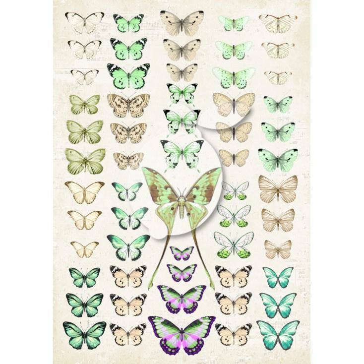 LP-VT042 Scrapbooking paper - Vintage Time 042 - Lemoncraft - My swett Provence - Green butterflies