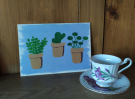 Huisplantjes