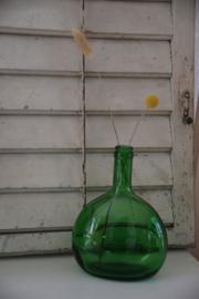 Vintage groene fles