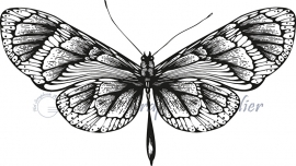 HP Stempel 56c Vlinder breed