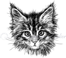 HP Stempel 87a, Katten kop