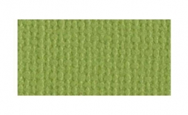 Bazzill cardstock, kleur PARAKEET, 1 vel 30,5 x 30,5 cm