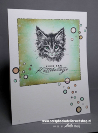 HP Stempel 91a, Kattebelletje