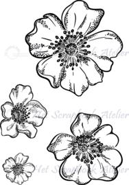 HP Stempel 86b, Set 4 bloemen teer