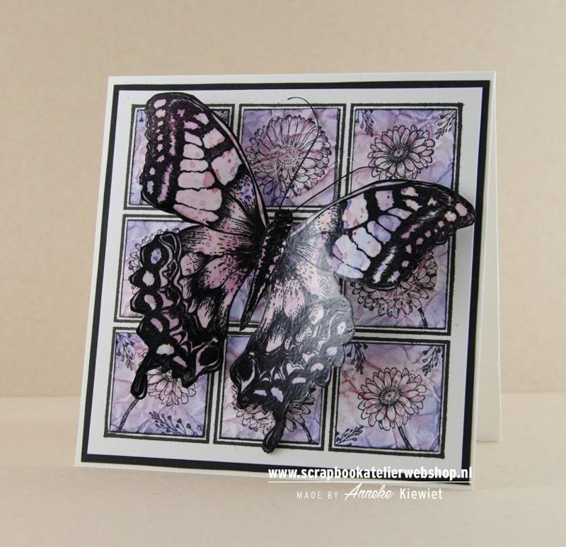 Workshop pakketje Big Butterfly kaart