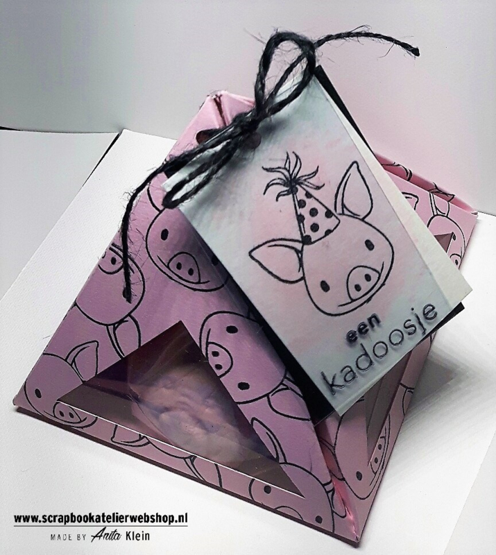 Workshop pakketje Pigs in a box