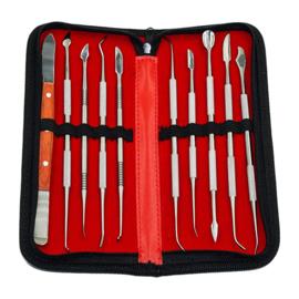 10-delig RVS instrumentenset voor tanden en kiezen in handige opbergetui.