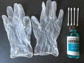 Listerine Care Pack (Cool Mint)