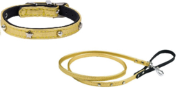 Starpet  mini Gold Halsband & Lijn