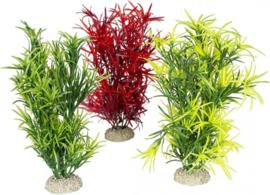 Plant hydrilla Gemengde kleuren L - height 27cm