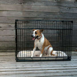 Lucky dog bench L 91cm
