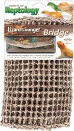 Lizzard Lounger Bridge