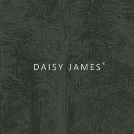 Daisy James THE CARRIBEAN