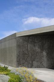 Wall & Deco WOODPECKER