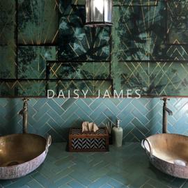 Daisy James THE JADE