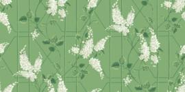 Botanical Botanica WISTERIA (5 kleuren)