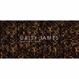 Daisy James THE PENNY