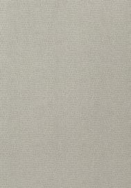 Thibaut CHAMELEON (6 colors)