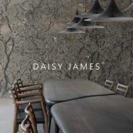 Daisy James THE SONG (2 colors)