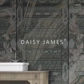 Daisy James THE CARTOUCHE
