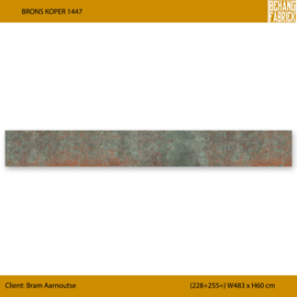 Brons Koper 1447   (228+255=) W483 x H60