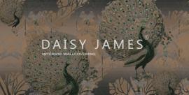 Daisy James THE PAVO