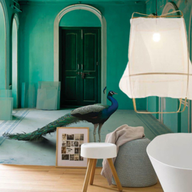 THE QUEEN ROOM 2 by Karen Knorr