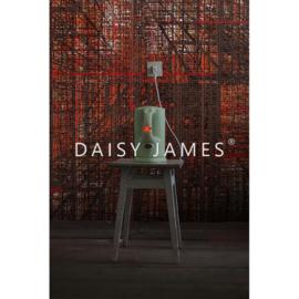 Daisy James THE DEEP