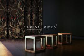Daisy James THE HERALD