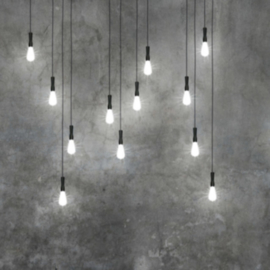 Light + Light 09