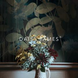 Daisy James THE ASH no.3