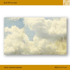 BLUE SKY on vinyl - 525 x 311 cm