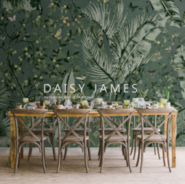 Daisy James THE CANOPY