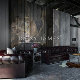 Daisy James THE WOODEN FACE