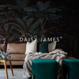 Daisy James THE BLACK PARC