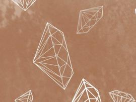 LOST DIAMONDS (4 kleuren)