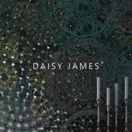Daisy James THE RHYTM