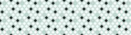1423 PLUS | B81 x B300 cm