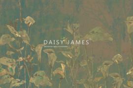 Daisy James THE PERIGONE (3 colors)