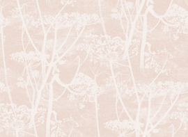 Icons COW PARSLEY (5 colors)