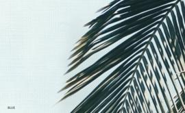 ALOHA (2 colors)