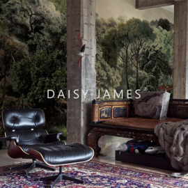 Daisy James THE  BROOK